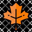 Leaf Maple Autumn Icon