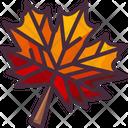 Garden Maple Leaf Nature Icon