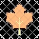 Maple Leaf Canadian Canada Icon