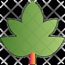Leaf Nature Christmas Icon