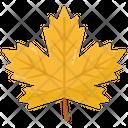 Foliage Maple Leaf Leaf Icon