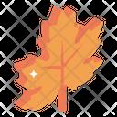 Maple Leaf Dry Leaf Autumn Leaf Icon