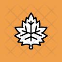 Maple Nature Leaf Icon