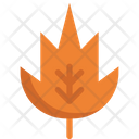 Maple leaves Icon