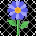Marguerite Flower Icon