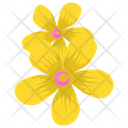 Marigold Generic Flower Seasonal Blossom Icon