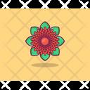 Marigold Spring Flower Flower Icon