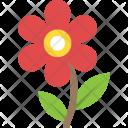 Marigold Icon