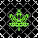 Marijuana law Icon
