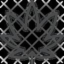 Marijuana Leaf Drugs Icon