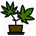 Marijuana Plant Cannabis Icon