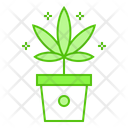 Marijuana Weed Pot Icon