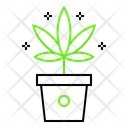 Marijuana plant Icon