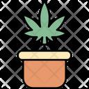 Plant Pot Cannabis Cannabidiol Icon