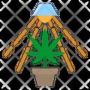 Marijuana Plant Marijuana Plant Icon