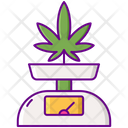 Marijuana Scale Ratio Scale Icon