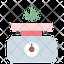 Marijuana Scale Icon