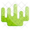 Seaweed Aquaculture Marine Algae Icon