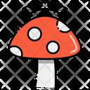 Material Grown Mushroom Grown Icon