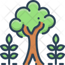 Maturity Tree Plant Icon