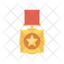 Star Ribbon Medal Icon