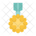 Medal Award Trophy Icon