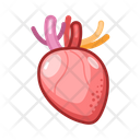 Medical Heart Medical Healthcare Icon