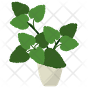 Melissa Potted Plant Icon