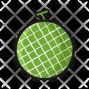 Fruit Nature Melon Icon
