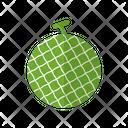 Melon Food Healthy Icon