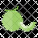 Melon Organic Vegetarian Icon