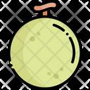 Melon Fruit Healthy Food Icon