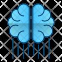 Mental Performance Brain Icon