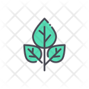 Menthol leaves Icon