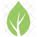 Milkweed Leaf Icon