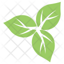 Milkweed Leaves Icon