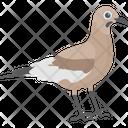 Bird Mimidae Mississippi Symbol Icon