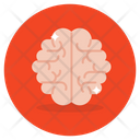 Mind Brain Human Mind Icon