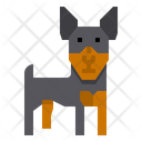 Miniature Pinscher Dog Icon
