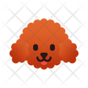 Miniature Poodle Dog Puppy Icon