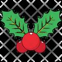 Mistletoe Leaves Mistletoe Christmas Icon