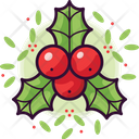 Holly Christmas Decoration Icon