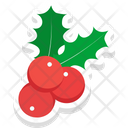 Mistletoe Christmas Mistletoe Plant Icon