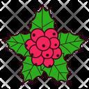 Mistletoe Christmas Decoration Icon