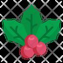 Mistletoe Christmas Holiday Icon