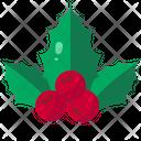 Mistletoe Adornment Tradition Icon