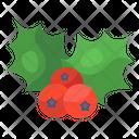 Berries Holly Berries Acai Berries Icon