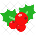 Mistletoe Decoration Xmas Icon