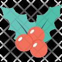 Mistletoe Christmas Plant Icon