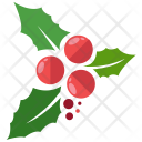 Mistletoe Decoration Icon